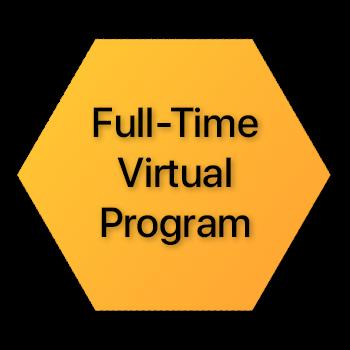 Full Time Virtual